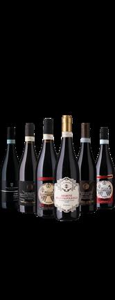 Amarone Ripasso Smagekasse