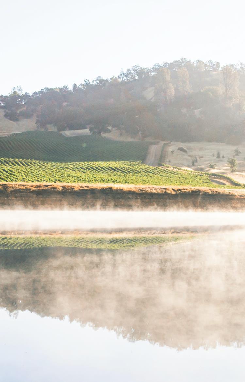 SB_California2.jpg (2)